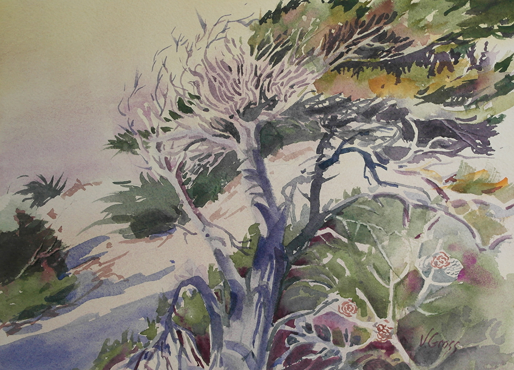Asilomar Dunes, Watercolor by Veronica Gross