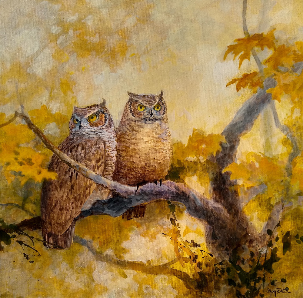 Floy Zittin_Great horned owl small