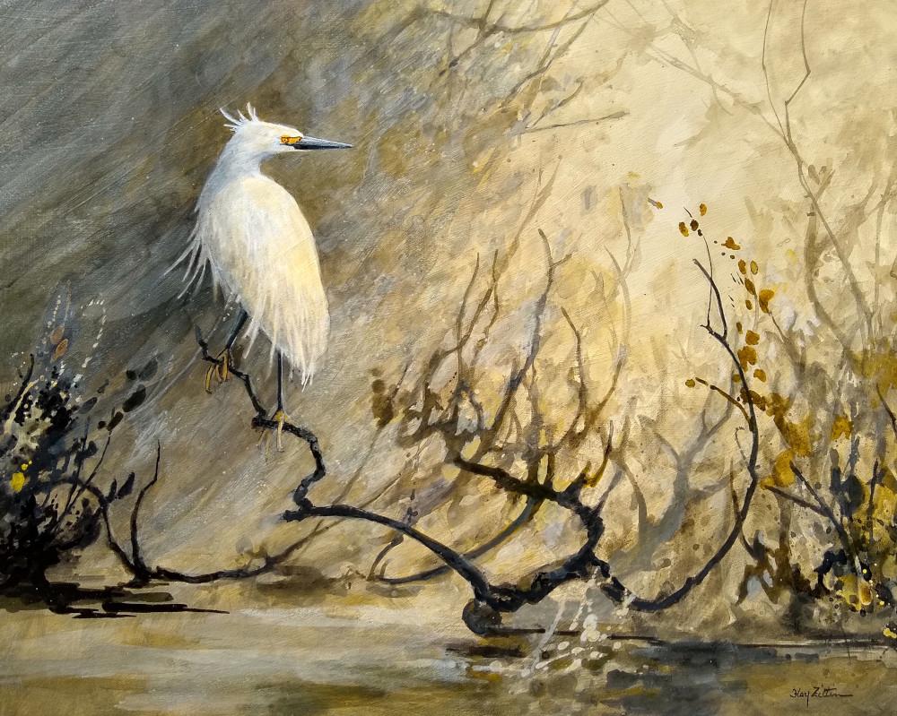 Floy Zittin_Snowy Egret-1000