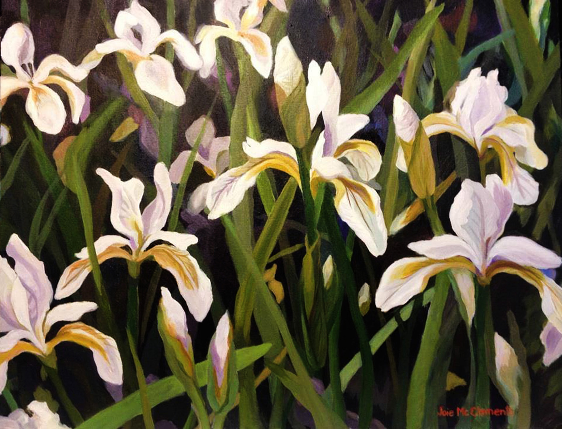 Joie_McClements_Field of Iris